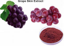 grapeskin extract valentus ageless ingredient