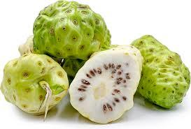 noni berry valentus ageless ingredient